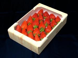 果物・青果運搬用農業資材